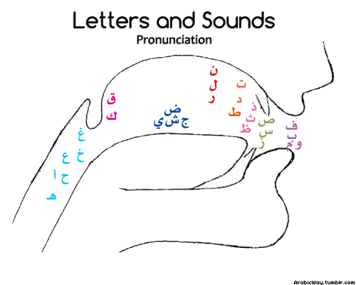 Arabic-letters-pronunciation-drawing
